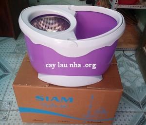 cay-lau-nha-360-do-siam-thai-lan (1)