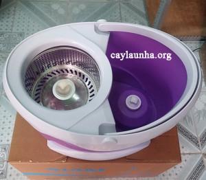 cay-lau-nha-360-do-siam-thai-lan (2)