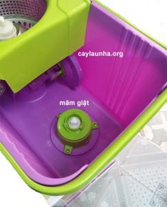 cay-lau-nha-otto-thai-lan (1)