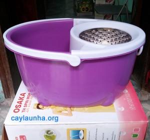 cay-lau-nha-spin-mop-thai-lan-osaka-obc (1)
