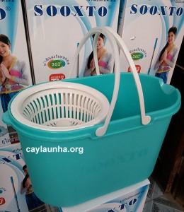 cay-lau-nha-thai-lan-sooxto-f1 (1)