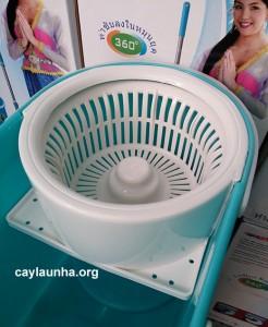 cay-lau-nha-thai-lan-sooxto-f1 (4)