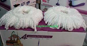 cay-lau-nha-thai-son-m016b (1)