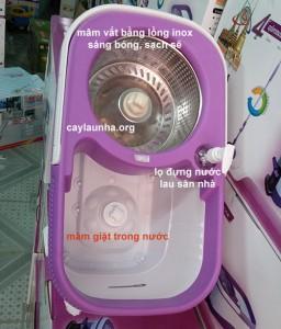 cay-lau-nha-thai-son-m016b (5)